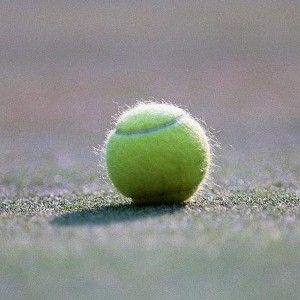 40-woof? Dog has emergency surgery after swallowing tennis ball