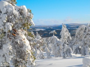 Doctors complete Lapland marathon for Combat Stress