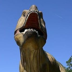 Elderly man 'keeps 9ft dinosaur in garden'