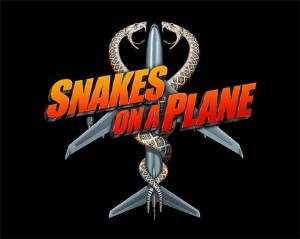 Snake found on plane mid-air