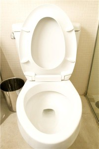 Woman 'skids around' in motorised toilet
